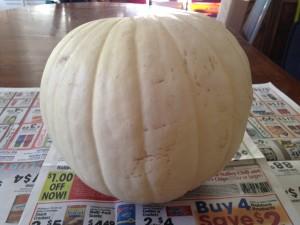 Melted Crayon Pumpkin Step 1